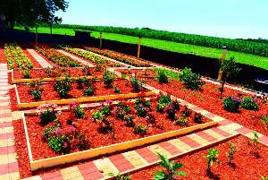 garden planted by volunteers
